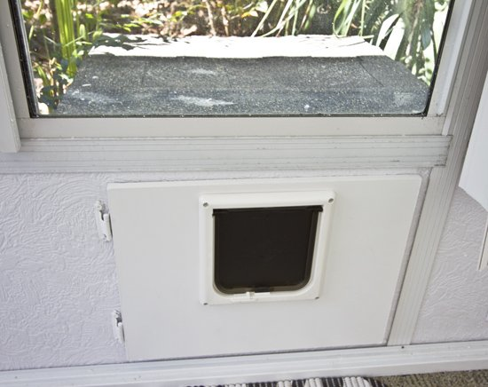 built in cat outhouse