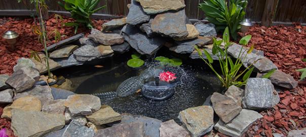 diy backyard pond