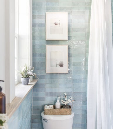 blue lagoon bathroom